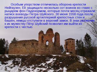 Особым упорством отличилась оборона крепости Нейгаузен. Её защищало несколь