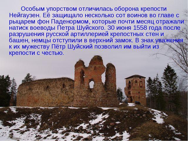 Особым упорством отличилась оборона крепости Нейгаузен. Её защищало несколь...