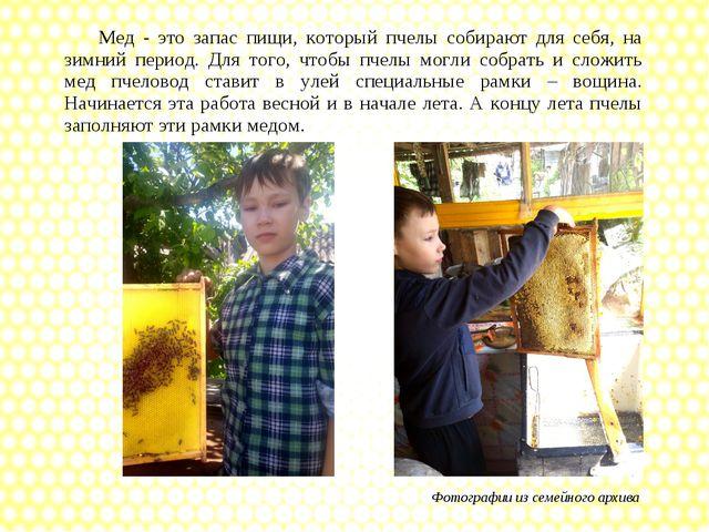 Фотографии из семейного архива Мед - это запас пищи, который пчелы собирают д...