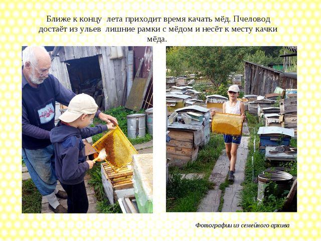 Ближе к концу лета приходит время качать мёд. Пчеловод достаёт из ульев лишни...