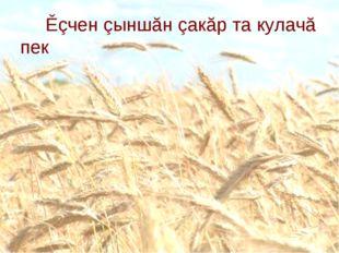 Ěçчен çыншăн çакăр та кулачă пек Кулач- калач, белый хлеб