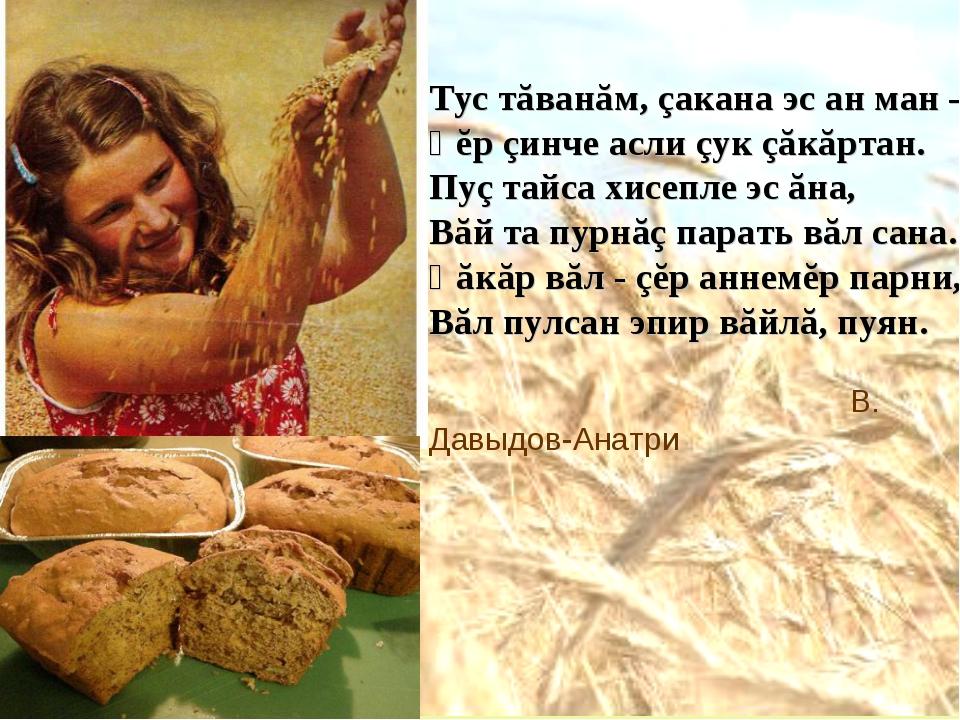Тус тăванăм, çакана эс ан ман – Ҫĕр çинче асли çук çăкăртан. Пуç тайса хисепл...
