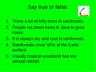 Say true or false: There a lot of lofty trees in rainforests. People cut down