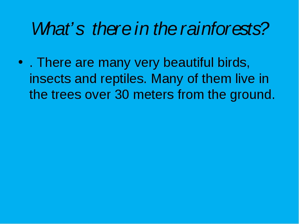 What's there in the rainforests? . There are many very beautiful birds, insec...