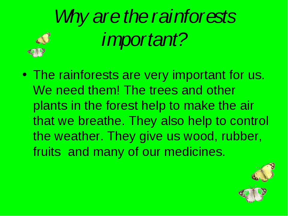Why are the rainforests important? The rainforests are very important for us....