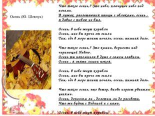 Осень (Ю. Шевчук) Что такое осень,? Это небо, плачущее небо под ногами. В лу