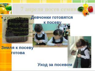 7 апреля посев семян Земля к посеву готова Девчонки готовятся к посеву Уход з