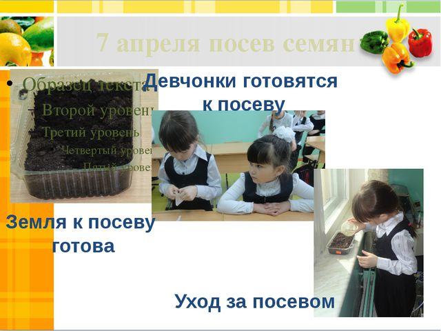 7 апреля посев семян Земля к посеву готова Девчонки готовятся к посеву Уход з...