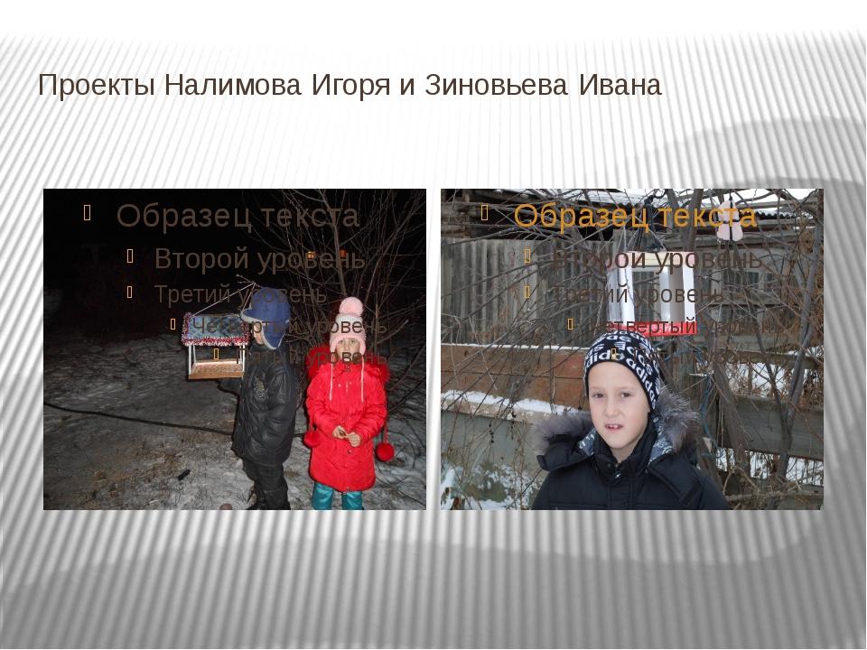 Проекты Налимова Игоря и Зиновьева Ивана