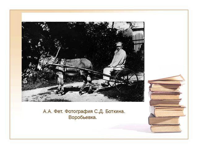 А.А. Фет. Фотография С.Д. Боткина. Воробьевка.