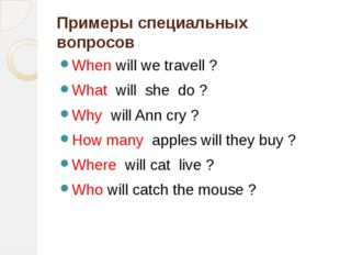 Примеры специальных вопросов When will we travell ? What will she do ? Why wi