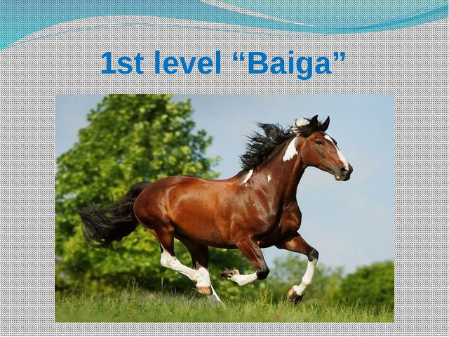 "1st level ""Baiga"""