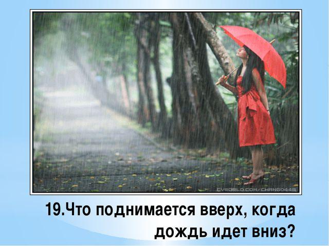 19.Что поднимается вверх, когда дождь идет вниз?