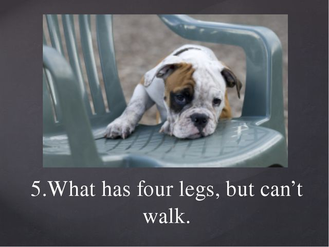 5.What has four legs, but can't walk.
