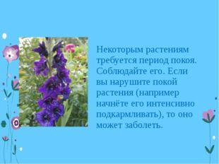Некоторым растениям требуется период покоя. Соблюдайте его. Если вы нарушите