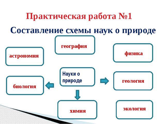 науки о природе схема