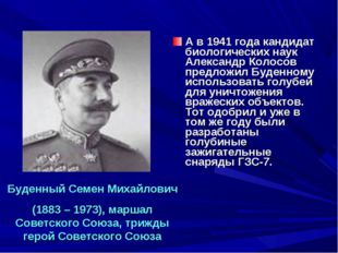 А в 1941 года кандидат биологических наук Александр Колосов предложил Буденно