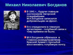 Михаил Николаевич Богданов В 1941 г., будучи главным зоотехником Загорской пт