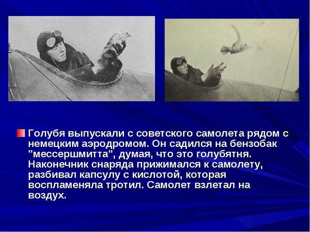 Голубя выпускали с советского самолета рядом с немецким аэродромом. Он садилс...