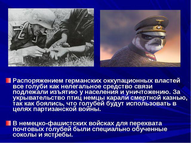 Распоряжением германских оккупационных властей все голуби как нелегальное сре...