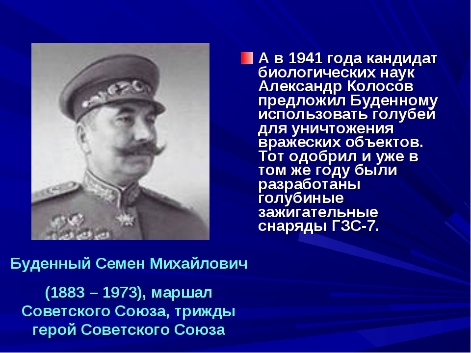 А в 1941 года кандидат биологических наук Александр Колосов предложил Буденно...