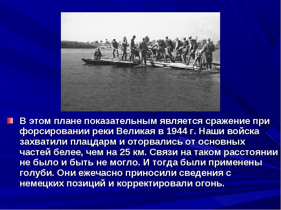 В этом плане показательным является сражение при форсировании реки Великая в...
