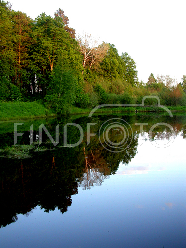 http://www.findfoto.ru/foto/medium/13/12956.jpg