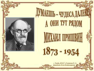 г. Тында, МОАУ «Гимназия № 2» Давыденко Нэля Владимировна