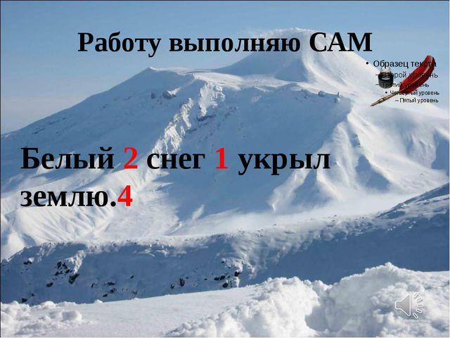 Работу выполняю САМ Белый 2 снег 1 укрыл землю.4