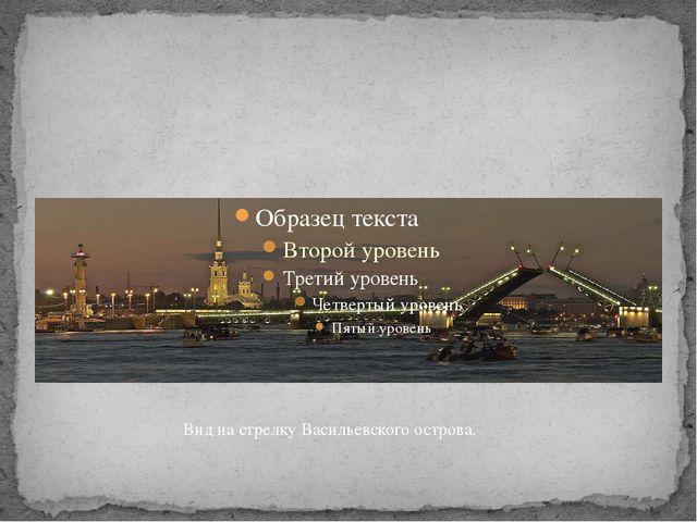 Вид на стрелку Васильевского острова.