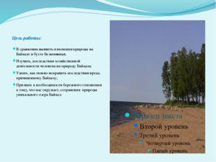 Цель работы: В сравнении выявить изменения природы на Байкале в бухте Безымя