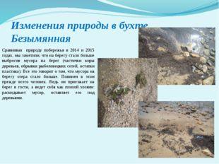 Изменения природы в бухте Безымянная Сравнивая природу побережья в 2014 и 201