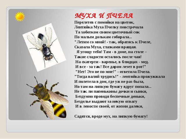 МУХА И ПЧЕЛА Перелетев с помойки на цветок, Лентяйка Муха Пчелку повстречала...