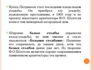 Купец Патрикеев стал последним владельцем усадьбы. Он приобрел эту усадьбу, в