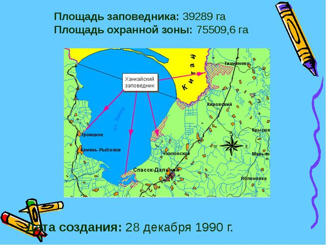 Площадь заповедника: 39289 га Площадь охранной зоны: 75509,6 га Дата создания...