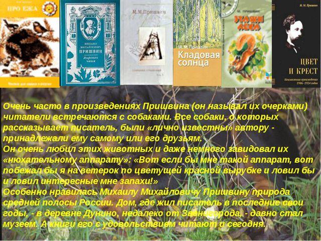 Очень часто в произведениях Пришвина (он называл их очерками) читатели встреч...