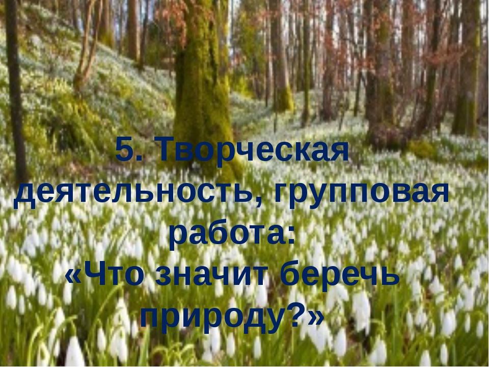 5. Творческая деятельность, групповая работа: «Что значит беречь природу?»