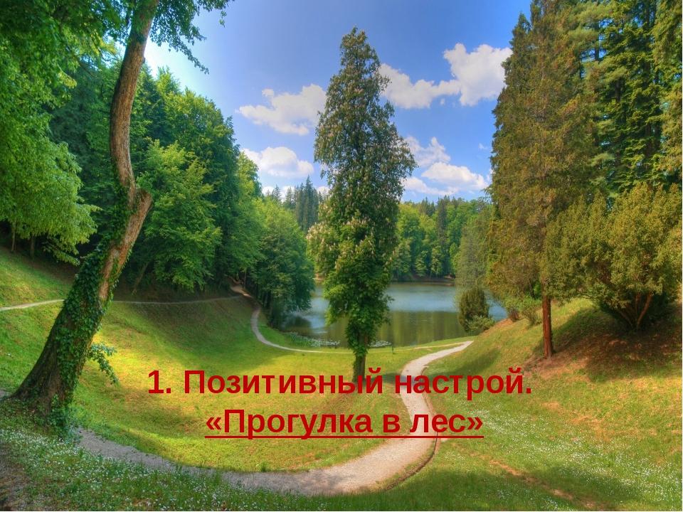1. Позитивный настрой. «Прогулка в лес»