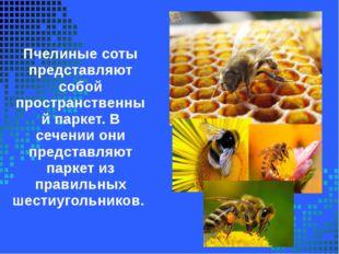 Пчелиные соты представляют собой пространственный паркет. В сечении они предс