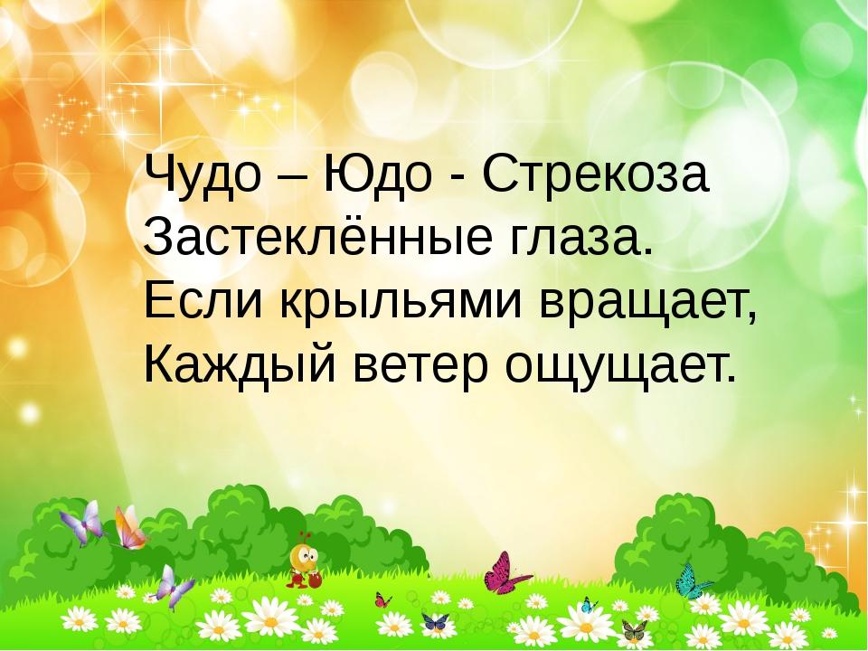 Чудо – Юдо - Стрекоза Застеклённые глаза. Если крыльями вращает, Каждый ветер...
