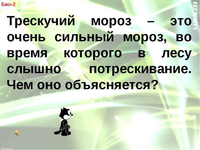 Био-2 Трескучий мороз – это очень сильный мороз, во время которого в лесу сл...