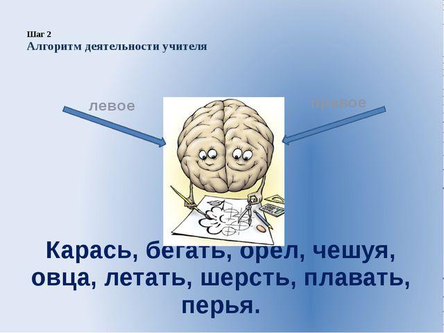 Шаг 2 Алгоритм деятельности учителя  Карась, бегать, орёл, чешуя, овца, лета...