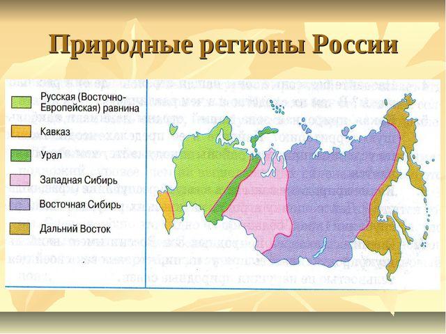 Природные регионы России