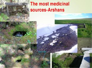 The most medicinal sources-Arshans