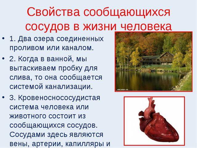 Свойства сообщающихся сосудов в жизни человека 1. Два озера соединенных проли...
