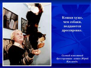 Кошки хуже, чем собаки, поддаются дрессировке. Самый известный дрессировщик к
