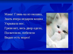 Мама! Глянь-ка из окошка, Знать вчера недаром кошка Укрывала нос. Грязи нет,