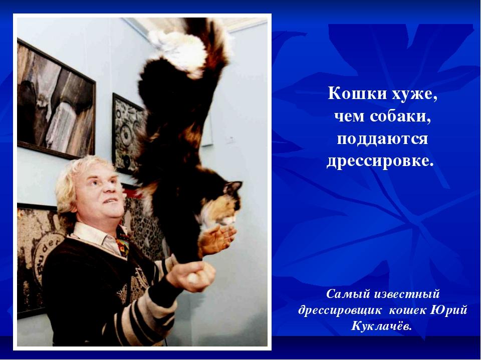Кошки хуже, чем собаки, поддаются дрессировке. Самый известный дрессировщик к...