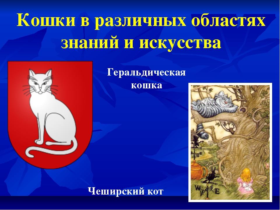 Кошки в различных областях знаний и искусства Геральдическая кошка Чеширский...