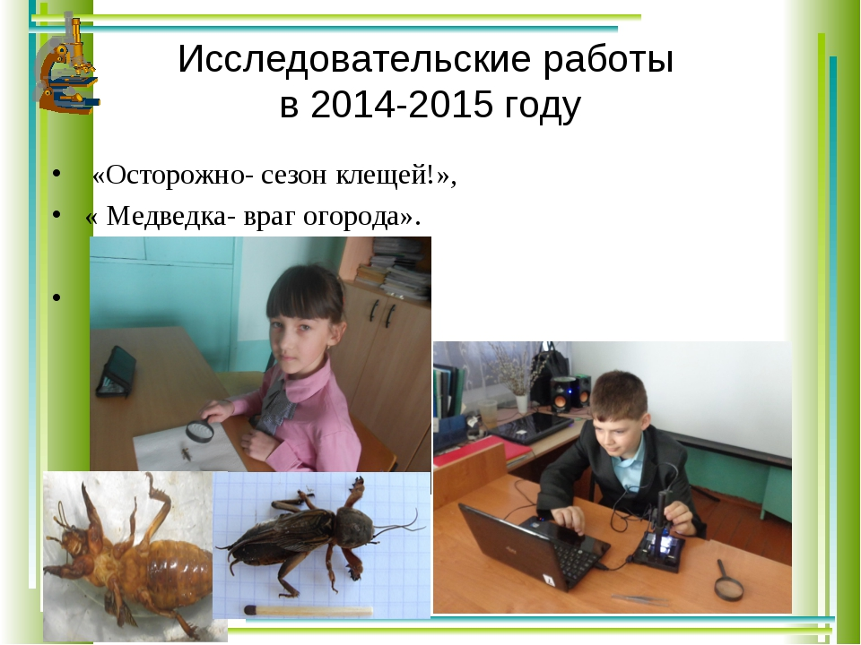 Исследовательские работы в 2014-2015 году «Осторожно- сезон клещей!», « Медве...